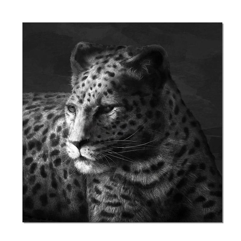 Wall Art Cheetah JM Furniture | Furniture Cart