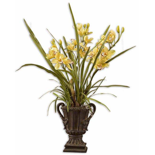 Sundance Orchid