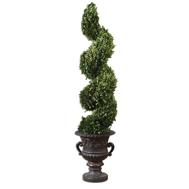 Preserved Boxwood Spiral Topiary